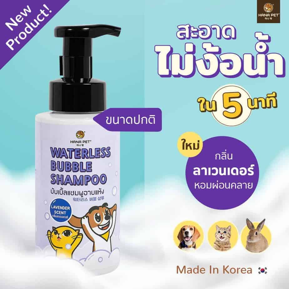 Waterless Bubble Shampoo Lavender